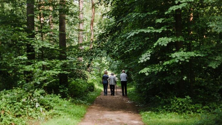 Gut begehbare Wege im FriedWald Dudenhofen (Foto: FriedWald GmbH, zur freien Verfügung)