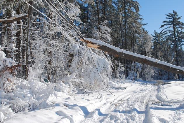 Auch wenn die Schneeflocken locker und leicht rieseln, führt die Schneelast nicht selten zu Schneebrüchen und eingestürzten Dächern. Das Gewicht einer Schneedecke variiert je nach Beschaffenheit und Alter. Quelle: WetterOnline (bei Verwendung bitte angeben)