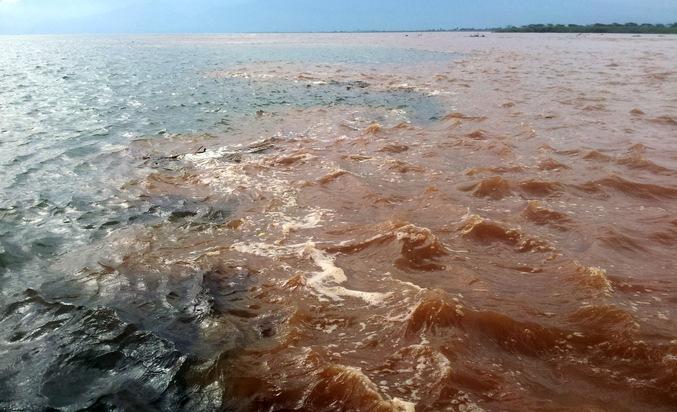 Zufluss des Rusizi Fluss in den Tanganjikasee