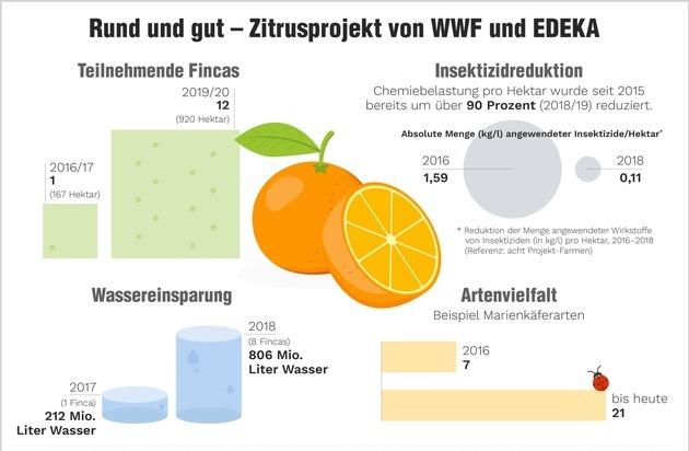 Orangen Gesundheit Medizin