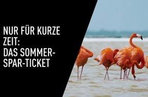 Das Kino-Highlight des Sommers: Das CinemaxX Sommer-Spar-Ticket / Extrem cool: Fünfmal Kino-Spaß für 27,90 Euro**