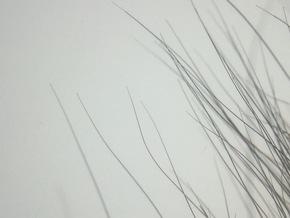 Spitze Haarspitzen weisen auf Echtfell hin © VIER PFOTEN
