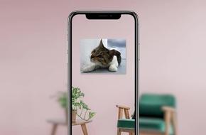 Picmentum App verwandelt Fotos in echte Wandbilder - und erweckt sie mit Augmented Reality zum Leben
