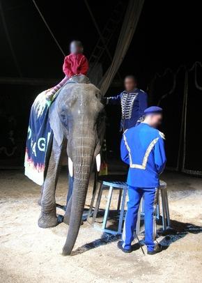 Sicherheits-Risiko: Kinder reiten im Zirkus Voyage auf Elefanten © VIER PFOTEN