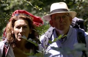Im Wald mit Peter Wohlleben, Adele Neuhauser und Denis Scheck
