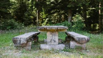 Ein Tisch mit zwei Bänken laden im FriedWald Schenkenzell zum Verweilen ein.