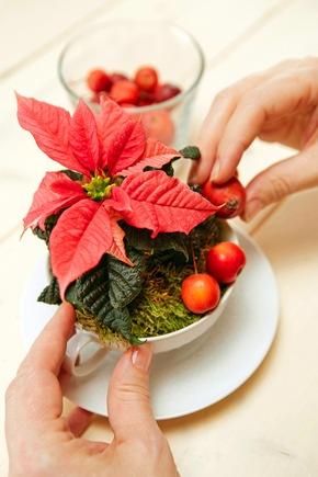 Den Moosrand mit natürlichen Materialien wie Zieräpfeln oder Ilexzweigen dekorieren.