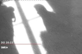 """Sexuelle Belästigung - Sporttrainer unter Verdacht / Türken im Land für Erdogan - ein """"Evet"""" als Denkzettel? in """"Zur Sache Baden-Württemberg"""", 20.4.2017, 20:15 Uhr, SWR Fernsehen in Baden-Württemberg"""