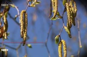 """Frühlingszeit - Allergiezeit. Was hilft? """"Marktcheck"""", SWR Fernsehen"""