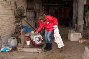 Die Streuner werden mit Futter angelockt und mit Lebendfallen eingefangen © VIER PFOTEN