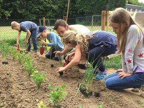 Gemeinsam für leckeres Gemüse: Schüler der Katholischen Grundschule Stommeln in Pulheim beim Bepflanzen ihres neuen Lernorts. Quelle: GemüseAckerdemie