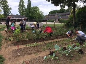 Durch die Förderung der Deutschen Postcode Lotterie erhält das Schulteam die Ausrüstung für das Bearbeiten des Ackers. Quelle: GemüseAckerdemie