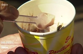 """Hochsaison für Wespen - Allergiemittel werden knapp / """"Zur Sache Rheinland-Pfalz!"""" am 30.8.2018, 20:15 Uhr, SWR Fernsehen"""