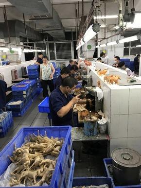 Travailleurs en contact avec des produits chimiques à Lovable