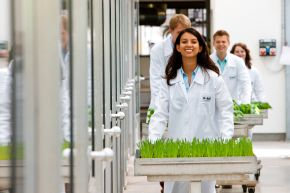 """Pflanzenschutz der Zukunft. Die Labormitarbeiter Maria Quintero, Justus Rabe, Timo Striebinger und Patricia Schädel  arbeiten gemeinsam im Gewächshaus an dem Pflanzenschutz der Zukunft. BASF arbeitet hier an einem Wirkstoff, der die Pflanze schon vor dem Keimen schützt. Das neue Pflanzenschutzmittel  ermöglicht dem Landwirt in Zukunft einen höheren Ernteertrag. +++ Stichworte: BASF; Chemie; Industrie; Kundenbranchen; LOGO; Anwendungsgebiete; Pflanzenschutz; Landwirtschaft; Wirkstoff; Mitarbeiter. +++ Die Verwendung dieses Bildes ist für redaktionelle Zwecke honorarfrei. Veröffentlichung bitte unter Quellenangabe: """"obs/BASF SE"""""""