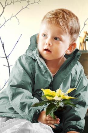 Für kleine Kinderhände eignen sich besonders die filigranen Mini-Sterne.