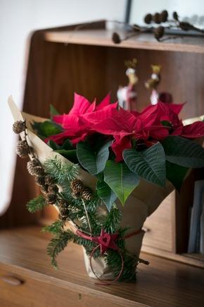 Packpapier, Tannengrün, ein Fichtenzweig mit Zapfen und etwas Bindfaden genügen, um aus einem schlichten Weihnachtsstern ein schönes Mitbringsel für den Adventskaffee zu machen.