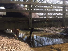 Blick unter die Brücke
