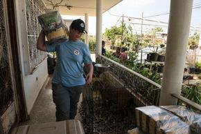 Mitarbeiter der VIER PFOTEN Katstrophenhilfe versorgen Tiere in Puerto Rico © Roxanne Bolton | VIER PFOTEN