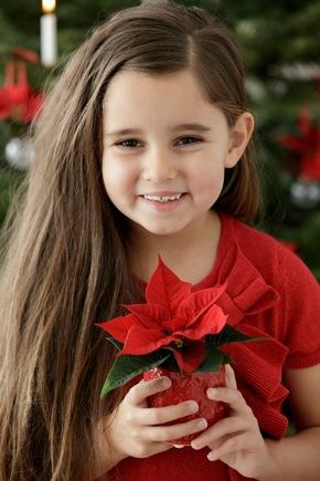 Kleine Geste, große Wirkung. Ein Weihnachtsstern ist ein wunderbar schlichtes und schönes Geschenk, mit dem sich große Gefühle ausdrücken lassen.