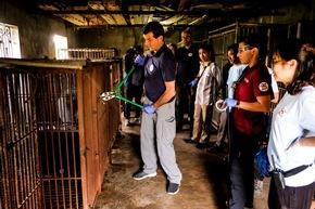 Der deutsche Bärenexperte Carsten Hertwig öffnet den Käfig einer ehemaligen Gallebärin mit einem Bolzenschneider © VIER PFOTEN, Bogdan Baraghin