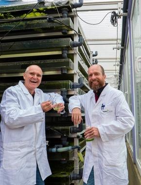 Pressemitteilung: Die Nominierten des Deutschen Nachhaltigkeitspreises Forschung