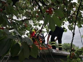 Der Rettungsdienst versorgt und stabilisiert den Patienten auf dem Gartenhausdach