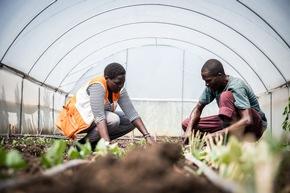In einem vom BMZ geförderten Projekt haben Bauern in Kenia den wassersparenden Gemüseanbau mit Tröpfchenbewässerung in Gewächshäusern erlernt.