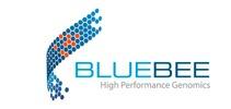 weiter zum newsroom von Bluebee