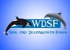 weiter zum newsroom von Wal- und Delfinschutz-Forum (WDSF)