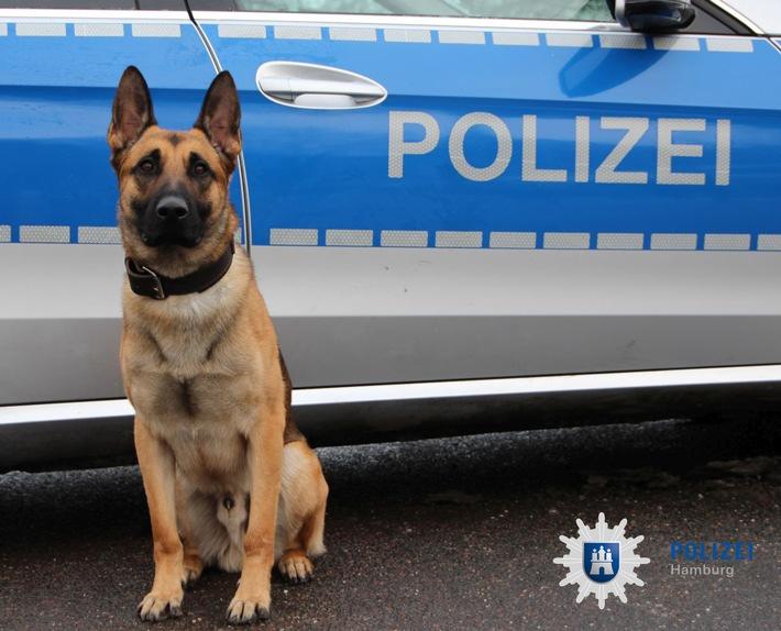 POL-HH: 171114-1. Zwei Festnahmen nach Einbruch in Kiosk in Hamburg-Altona-Nord