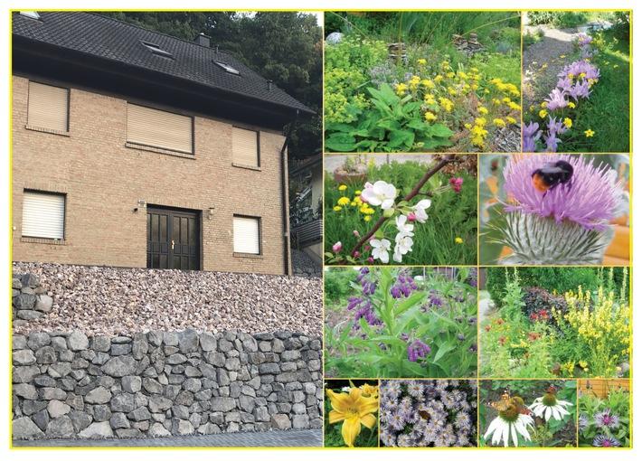 Was tun? Was tun! - Bienen brauchen blühende Gärten statt Schotterwüsten