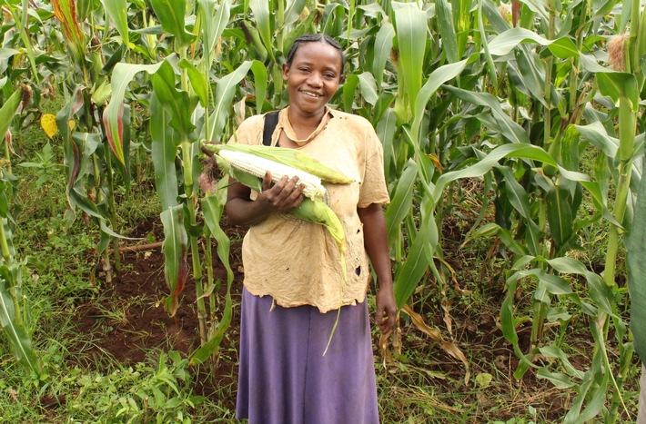 """Dank der Stiftung Menschen für Menschen kann die äthiopische Bäuerin Aberesh Gemede (36) genug ernten, um ihre Familie das ganze Jahr zu ernähren. Weiterer Text über ots und www.presseportal.ch/de/nr/100007199 / Die Verwendung dieses Bildes ist für redaktionelle Zwecke honorarfrei. Veröffentlichung bitte unter Quellenangabe: """"obs/Stiftung Menschen für Menschen Schweiz/Menschen für Menschen"""""""