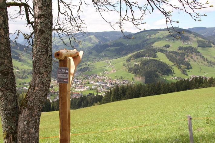 Die Salzburger Sportwelt startet in den Almsommer 2014 - BILD