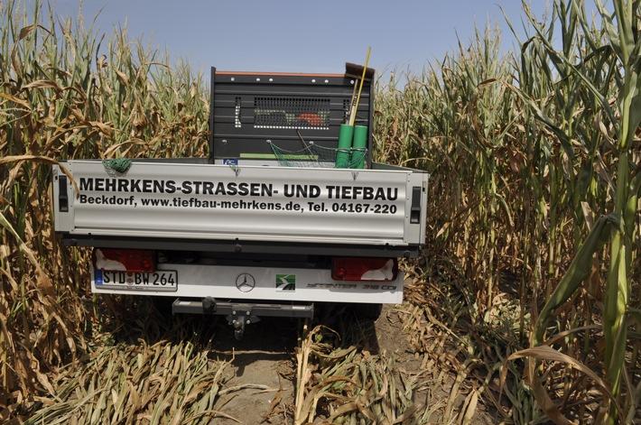 Sprinter steht im Maisfeld