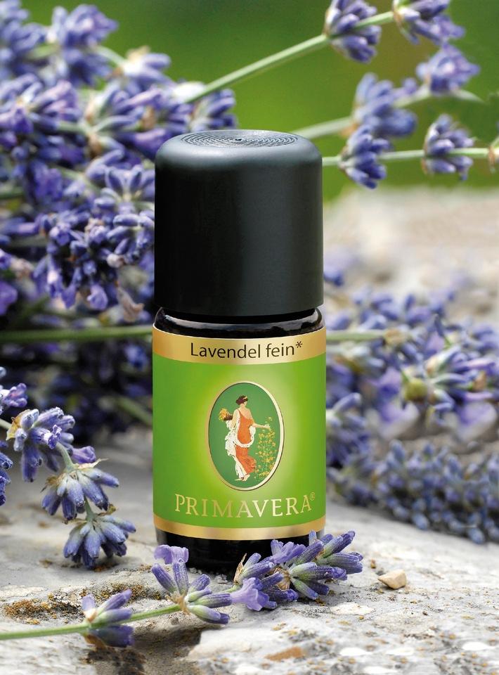 """Lavendel und Lavendelöl von PRIMAVERA. Lavendel gilt als """"Öl der Mitte"""". In der Aromapflege wird es bei Hautproblemen, Schlaflosigkeit, Anspannung, Muskel-, Verdauungs- und Atemwegsbeschwerden eingesetzt. © PRIMAVERA LIFE / Weiterer Text über ots und www.presseportal.de/pm/116667 / Die Verwendung dieses Bildes ist für redaktionelle Zwecke honorarfrei. Veröffentlichung bitte unter Quellenangabe: """"obs/© PRIMAVERA LIFE"""""""
