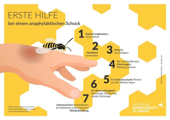 Allergischer Schock bei Insektenstich: Frühes Erkennen und schnelles Handeln kann Leben retten