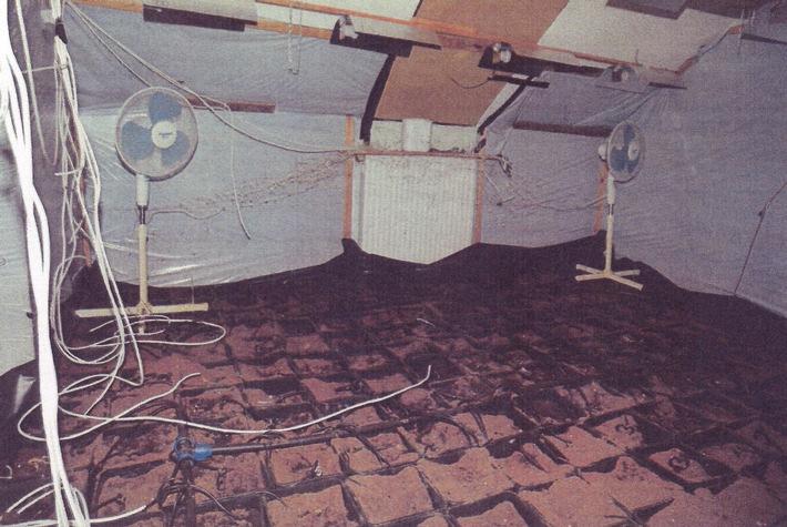 Das Foto zeigt einen der Räume mit der Aufzuchtanlage und den leeren Pflanzkübeln