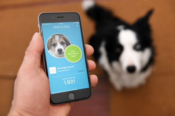 """Neue Tierschutz-App feed a dog hilft Hunden in Not mit Futterspenden. Ein Mann bedient am 16.12.17 in Frankfurt am Main die neue Futterspenden-App feed a dog. Weiterer Text über ots und www.presseportal.de/nr/129138 / Die Verwendung dieses Bildes ist für redaktionelle Zwecke honorarfrei. Veröffentlichung bitte unter Quellenangabe: """"obs/feed a dog/Maurizio Gambarini"""""""