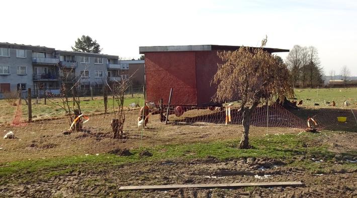 Der Hühnerstall an der Kassenberger Straße in Bochum-Dahlhausen