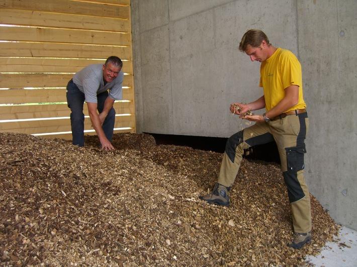 Energieholz - richtige Lagerung lohnt sich