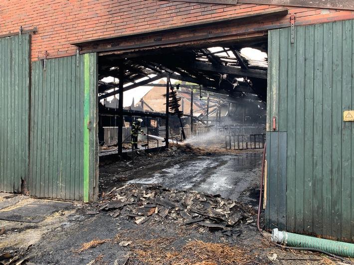 FW-LK Leer: Feuer zerstört Gulfhof in Holtland - Rund 50 Tiere konnten nicht mehr gerettet werden