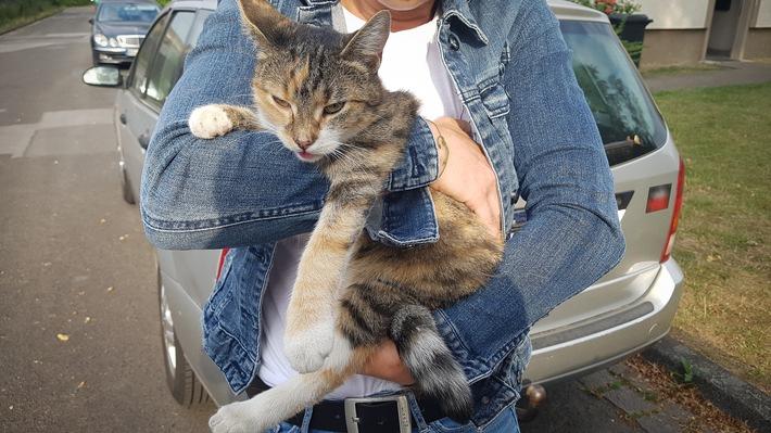 Eine Kripo-Beamtin griff beherzt zu und rettete die Katze aus ihrer misslichen Lage.