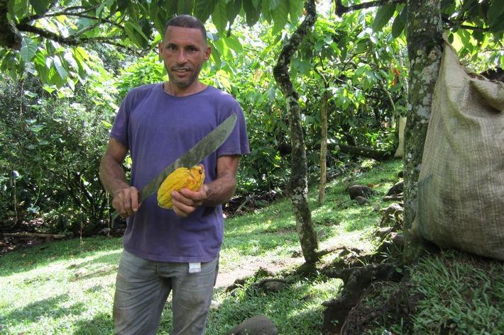 """Von der Genossenschaft COOPROAGRO in der Dominikanischen Republik bezieht die GEPA einen Großteil des fairen Bio-Kakaos für ihre Schokoladenprodukte Bio-Kakaobauer Juan Edito Hernandez: """"Andere Unternehmen zahlen, was sie wollen. COOPROAGRO zahlt einen fairen Preis für alle."""" Durch die GEPA konnte COOPROAGRO ihren Bio-Kakao direkt vermarkten. Die GEPA hat auch mehrfach Kosten für die Naturland-Biozertifizierung übernommen. Weiterer Text über ots und www.presseportal.de/nr/43796 / Die Verwendung dieses Bildes ist für redaktionelle Zwecke honorarfrei. Veröffentlichung bitte unter Quellenangabe: """"obs/GEPA mbH/GEPA - The Fair Trade Company"""""""