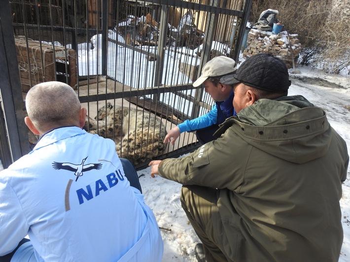 NABU Kirgistan.JPG