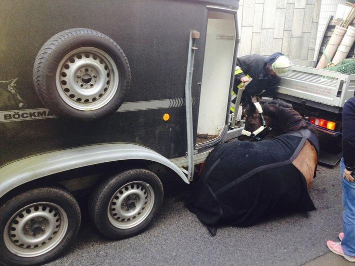 fw e pferd verletzt sich bei sturz aus fahrendem anh nger. Black Bedroom Furniture Sets. Home Design Ideas