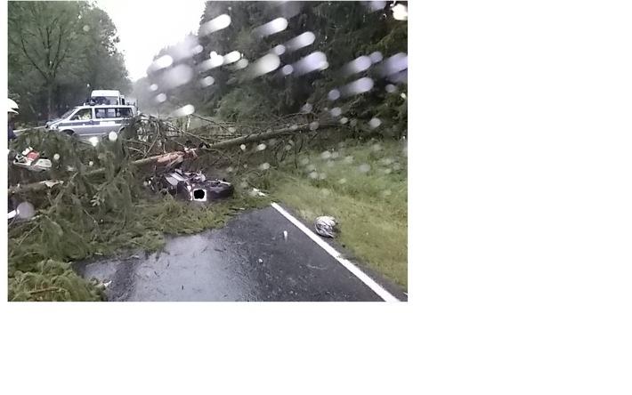 Unfall - Baum stürzt auf Fahrbahn