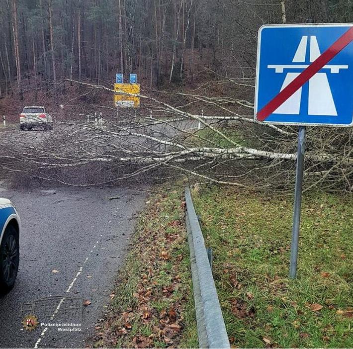 Umgestürzter Baum in der Autobahnausfahrt.