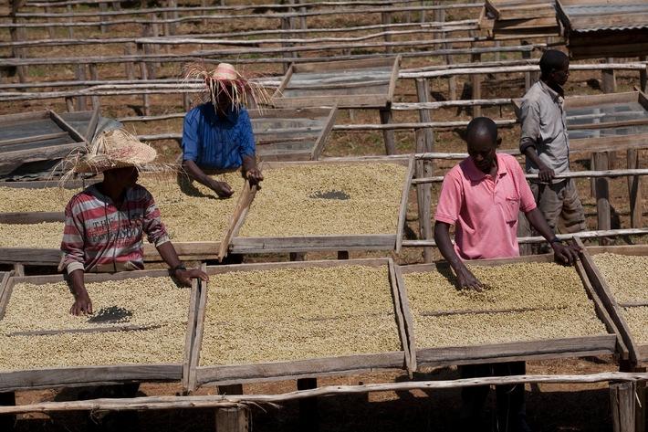 Nespresso stellt Nachhaltigkeitsziele 2020 und nachhaltigen Entwicklungsfonds vor (BILD)