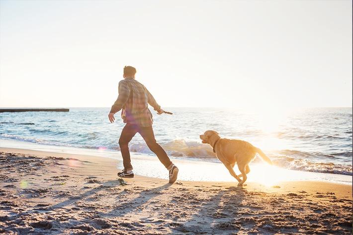 Presse-Info: Herbsturlaub mit Hund